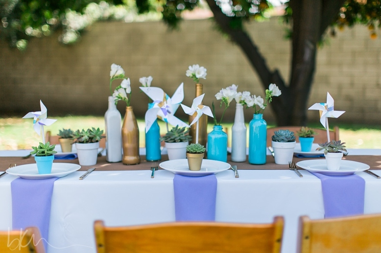 dsd tablescape